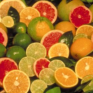 أفضل خمس أغذية لفصل الشتاء citrus.jpg